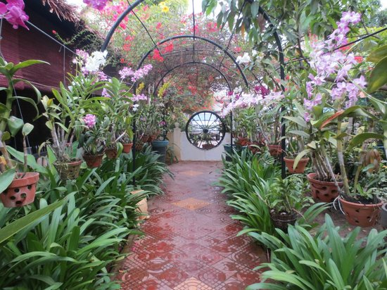 Central Boutique Angkor Hotel: An oasis in the middle of the town!