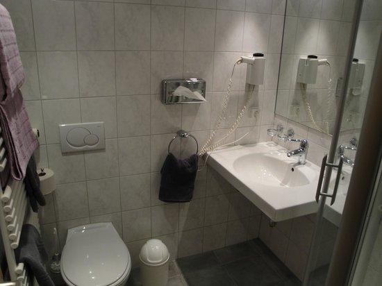 Waldshuter Hof: Standard double room #302