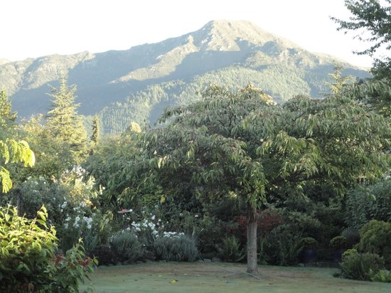 Marchmont Gardens : View of the garden with mountains behind
