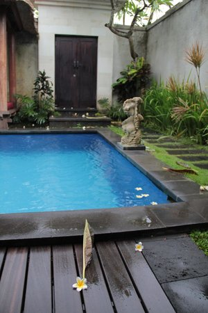 Grand La Villais Villa and Spa Seminyak: Pool
