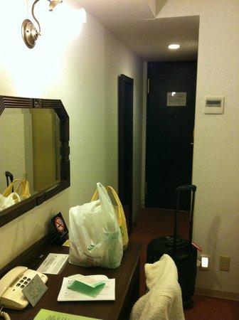 Ochanomizu St . Hills Hotel: Full-length mirror