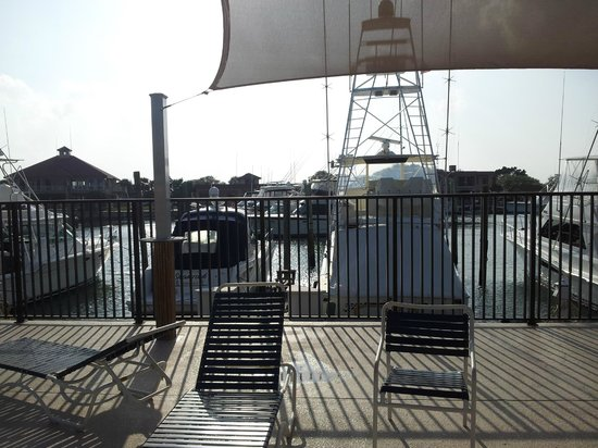 Inn at Camachee Harbor: View of the marina from the pool