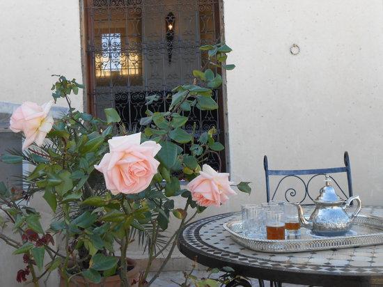 Riad Fez Yamanda: Avempace