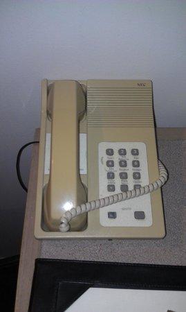 Bayview Eden: Room phone