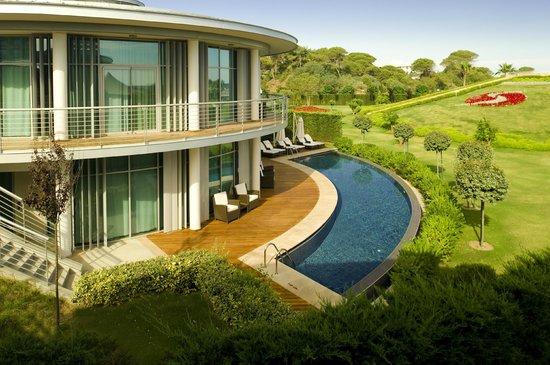 Calista Luxury Resort: Villa Pool