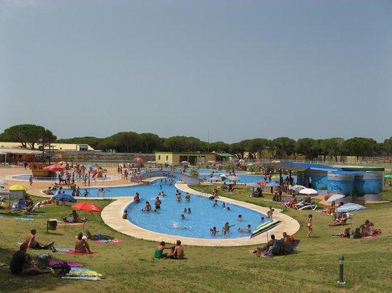 Camping Donana Playa: Piscine