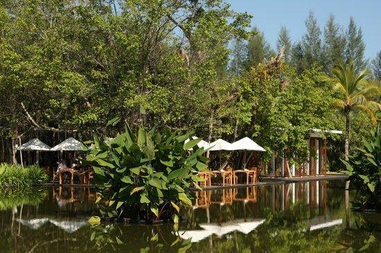โรงแรมสโรจิน: Restaurant and grounds