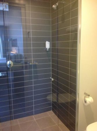 Citadines on Bourke Melbourne: lovely power shower