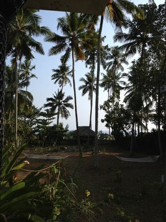 Varkala Villas: view from our room