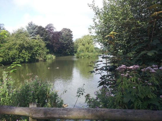 Jubilee Lake, Royal Wootton Bassett