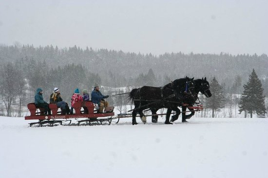 Colebrook Country Club & Motel: Sleigh rides at the annual winter carnival on the grounds.