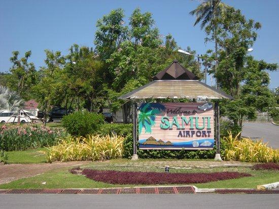 Hacienda Beach Resort: Le bonheur !