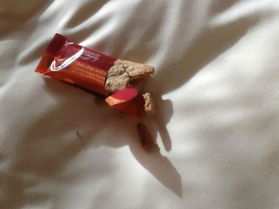 Radisson Blu Hotel, Belfast: Couldnt even provide decent biscuits!