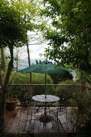 Shangrila Music Villa: Nice little front yard