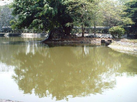 Vivanta by Taj - Kumarakom: visita desde habitacion