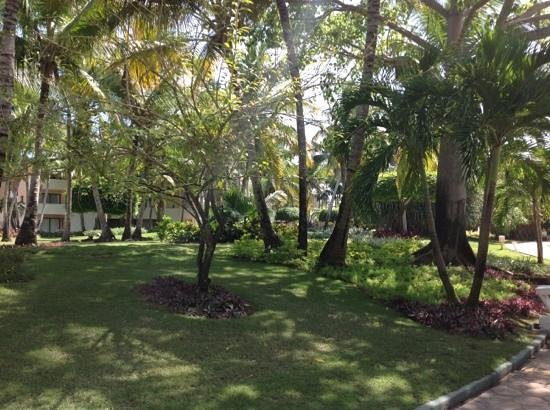 Catalonia Bavaro Beach, Casino & Golf Resort: les jardins de l'hotel