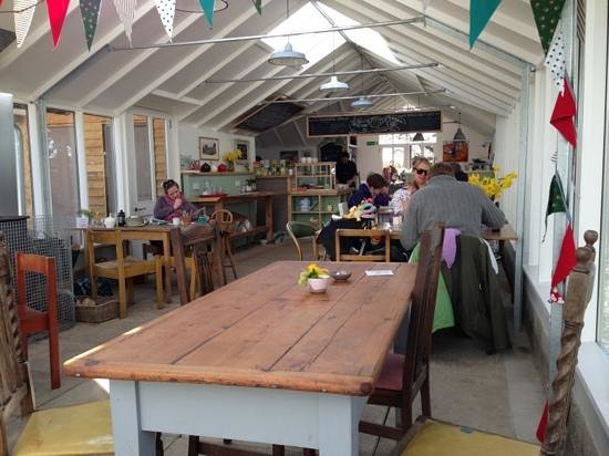 Potager Garden & Glasshouse Cafe: potager from inside the glass house