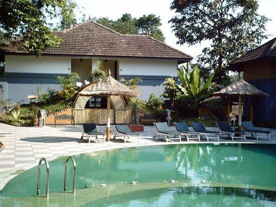 The Elephant Court: piscina