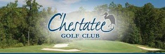 Quality Inn & Suites : Chestatee Golf Club