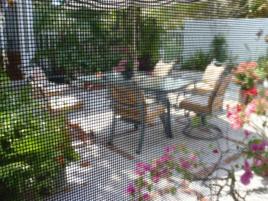 Seagrape Bed and Breakfast: View from our room...private screen...to the courtyard where breakast is served