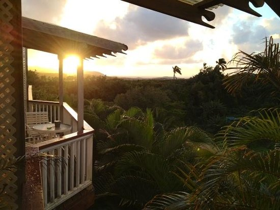 Kauai Banyan Inn: Room with a view...