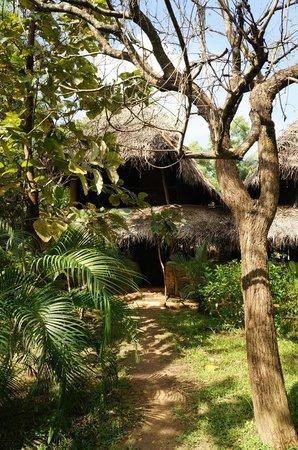 Kumbura Eco Lodge : Eco lodge