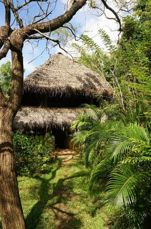 Kumbura Eco Lodge : Unique place to stay