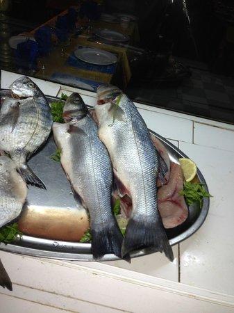 Sam's Restaurant : Sea bass before....