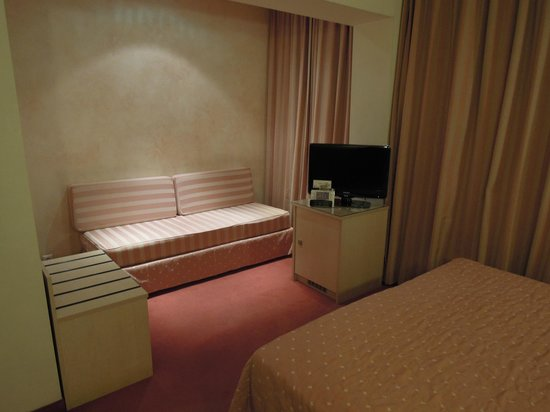 Best Western Plus Amazon Hotel: テレビとソファ