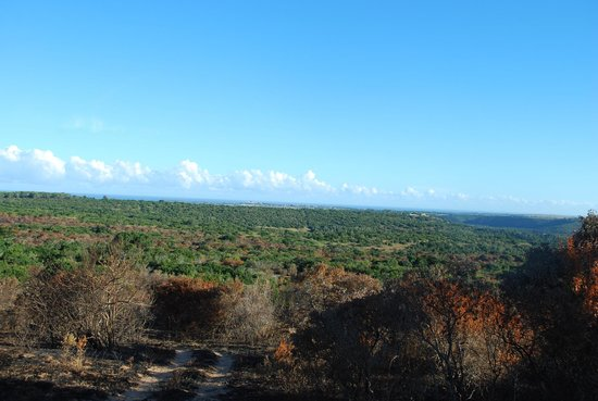 Sibuya Game Reserve: 4 -Star Luxury Tented Camps and Lodge: One of many views in Reserve