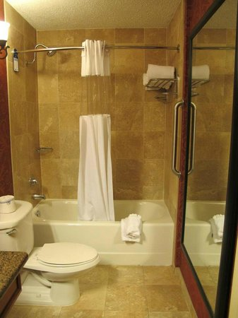 BEST WESTERN PLUS Savannah Historic District: Bathroom