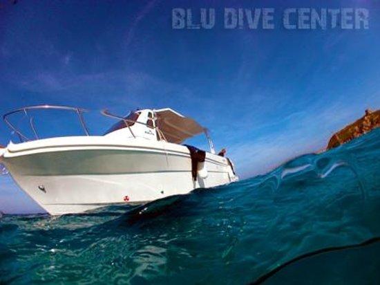 Blu dive center santa teresa gallura aktuelle 2017 - Dive center blu ...
