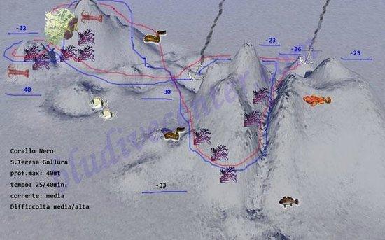 Mappa immersioni bocche di bonifacio picture of blu dive - Dive center blu ...