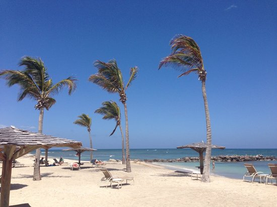 Nisbet Plantation Beach Club: you get a nice breeze sunbathing