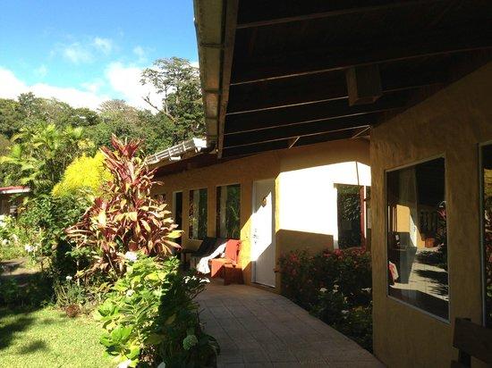 Hotel El Bosque照片