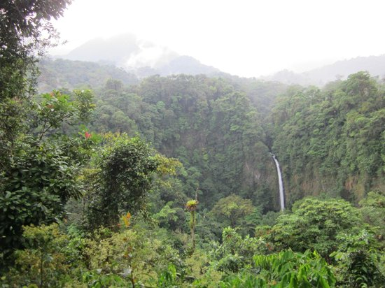 Hotel Arenal Green: Walking to waterfall