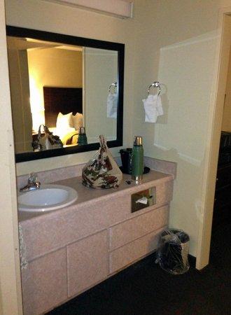 Quality Inn & Suites: bath area