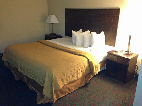Quality Inn & Suites: bed