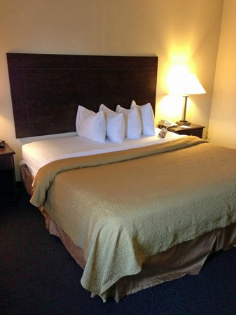 Quality Inn & Suites: bed 2