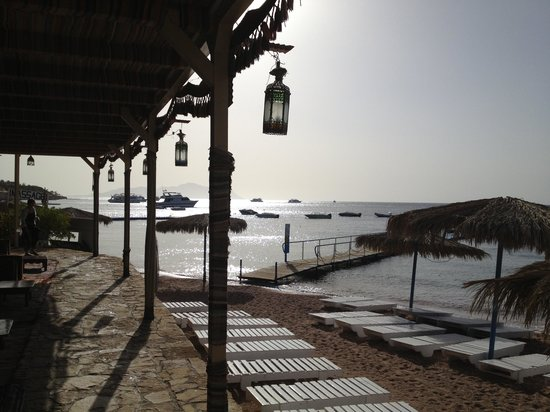 Sharks Bay Umbi Diving Village: From the Bedouin lounge