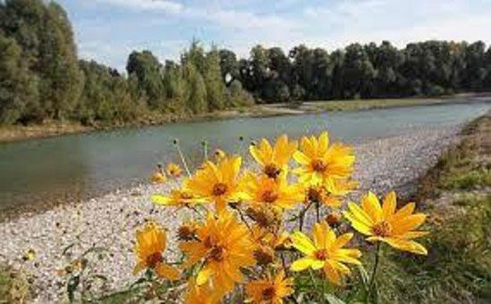 Andreoli & Miglioranzi: Parco Adige
