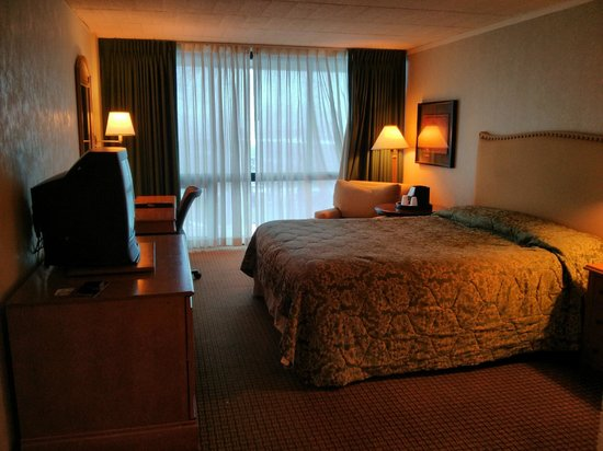 Millennium Buffalo: Room
