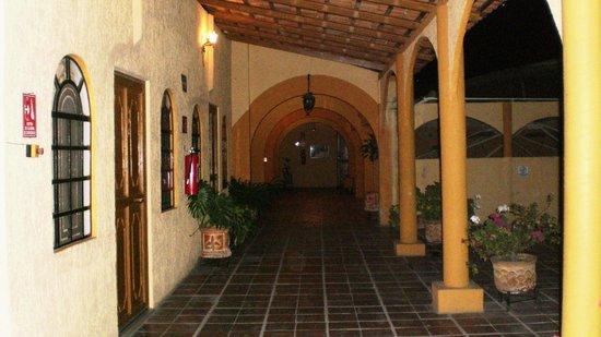 Hotel Frances: Terraza