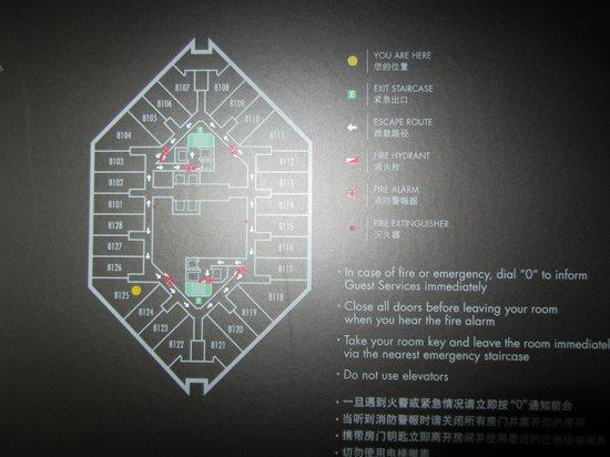 Park Hyatt Shanghai: 81st floor room layout