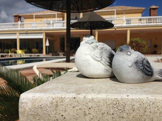 Dos Iberos Luxury Bed & Breakfast: 'huisdieren'