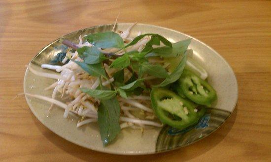 Little Saigon 2 Pho