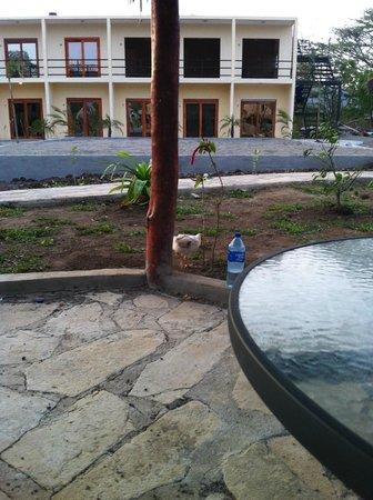 Surf Ranch Hotel & Resort: condos and a chicken