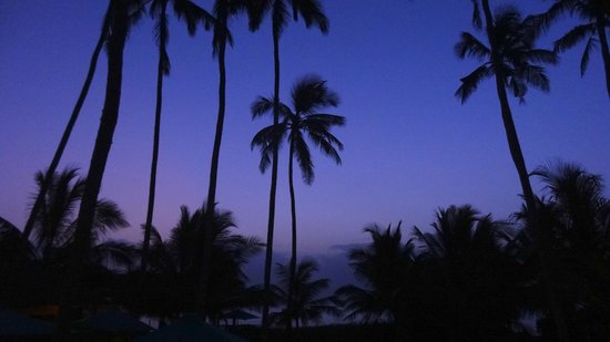 Diani Blue: Very early in the morning at Asha...