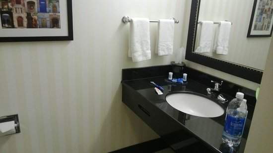 Fairfield Inn & Suites South Bend at Notre Dame : Bathroom
