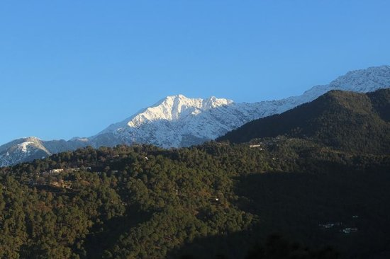 Hotel White Haven Palace Estate: Himalayas from the bedroom window after a fresh dusting of snow